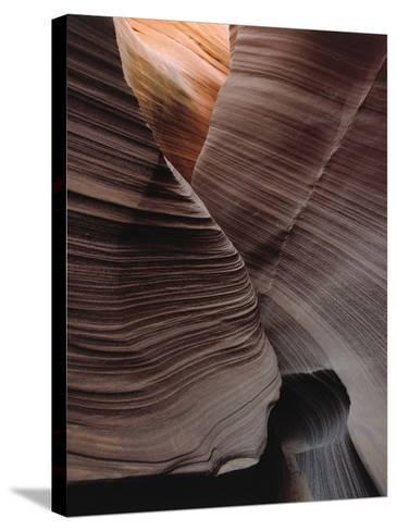 Grooves Decorate Curved Slot Canyon Walls-Jeff Foott-Stretched Canvas Print