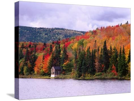 A Cabin Sits Nestled Among Autumn Colors-Jeff Foott-Stretched Canvas Print