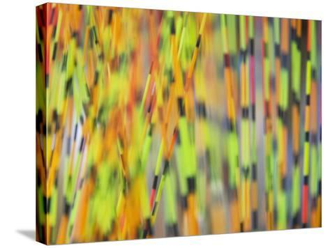 China, Colorful Floating Marks of Fish Bait-Keren Su-Stretched Canvas Print