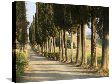 View of Countryside Near in Siena, Italy--Stretched Canvas Print