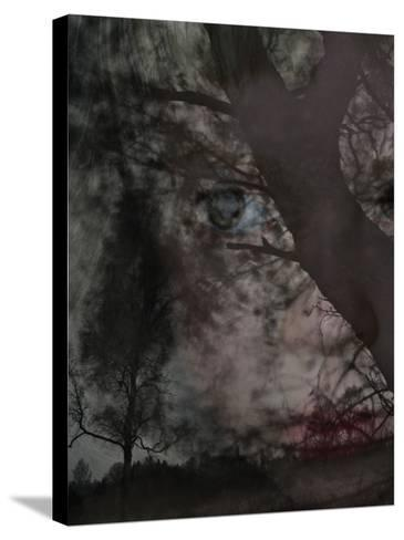 An Eerie Forest--Stretched Canvas Print