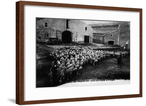 """Aveyron.394.Roquefort, Leaving a Flock of Sheep ""--Framed Art Print"
