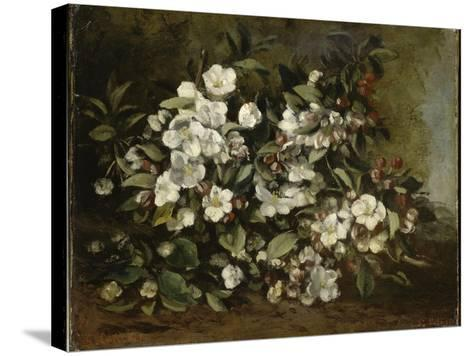 A Branch of Apple Blossoms also Said Cherry Blossoms-Gustave Courbet-Stretched Canvas Print