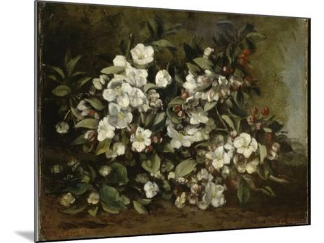 A Branch of Apple Blossoms also Said Cherry Blossoms-Gustave Courbet-Mounted Giclee Print
