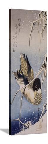 Canard et roseaux sous la neige-Ando Hiroshige-Stretched Canvas Print
