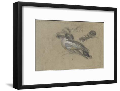 Canard et trois têtes de canard-Pieter Boel-Framed Art Print