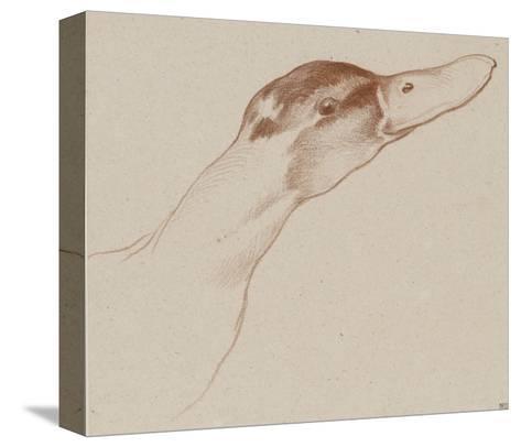 Tête de canard-Edme Bouchardon-Stretched Canvas Print