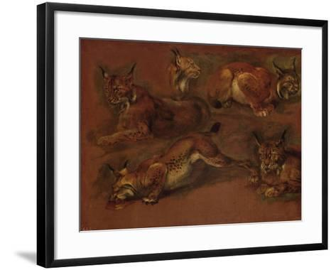 cinq lynx-Pieter Boel-Framed Art Print