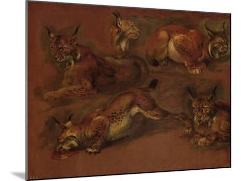 cinq lynx-Pieter Boel-Mounted Giclee Print