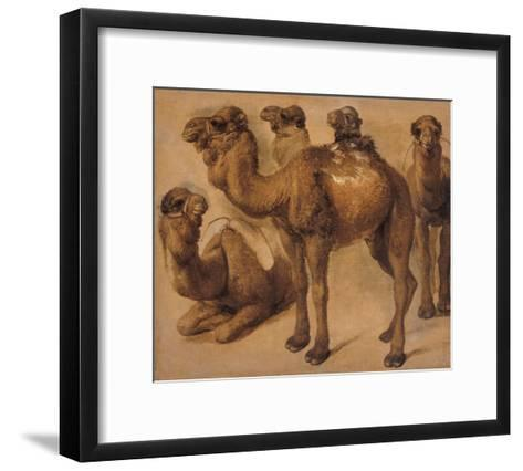 Cinq chameaux-Pieter Boel-Framed Art Print
