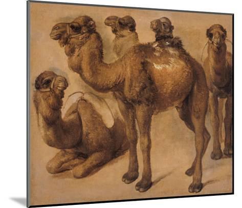 Cinq chameaux-Pieter Boel-Mounted Giclee Print