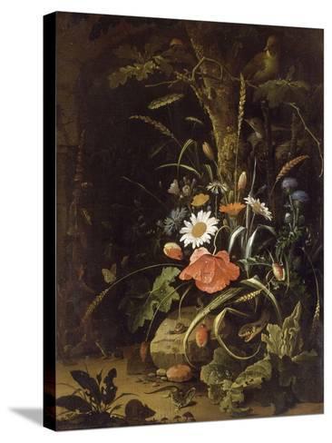 Fleurs, oiseaux, insectes et reptiles-Abraham Mignon-Stretched Canvas Print