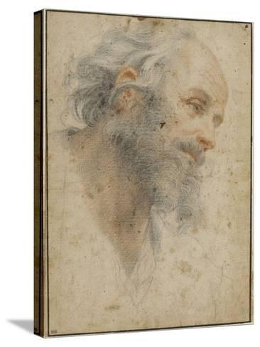Head of Bearded Man Seen Three-Quarters, Facing Right-Matteo Rosselli-Stretched Canvas Print