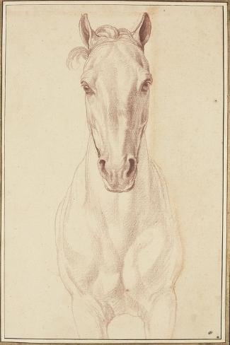 Cheval vu jusqu'aux avant-bras de face-Edme Bouchardon-Stretched Canvas Print
