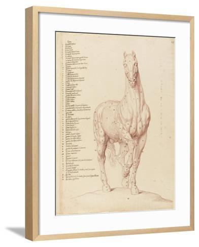 Cheval écorché, debout, la tête vue de face-Edme Bouchardon-Framed Art Print
