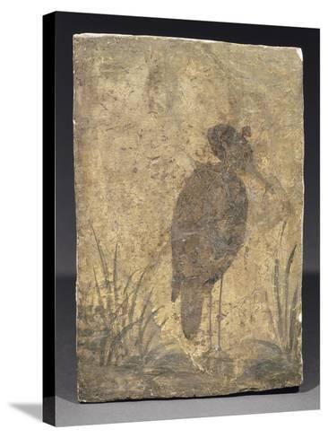 Héron--Stretched Canvas Print