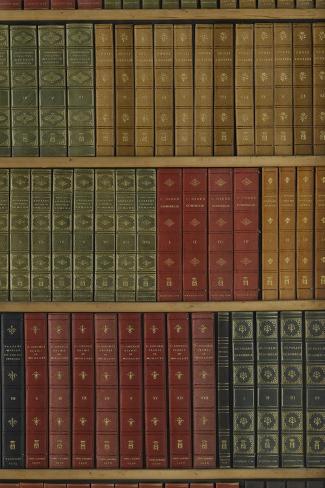 La Bibliothèque du Cabinet des livres--Stretched Canvas Print