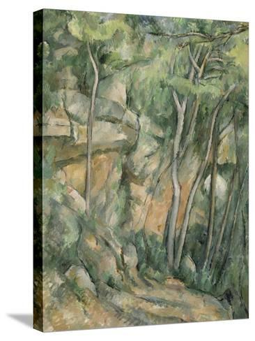 Dans le parc de Château-Noir-Paul C?zanne-Stretched Canvas Print