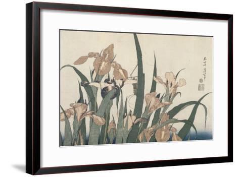 Iris et sauterelle-Katsushika Hokusai-Framed Art Print
