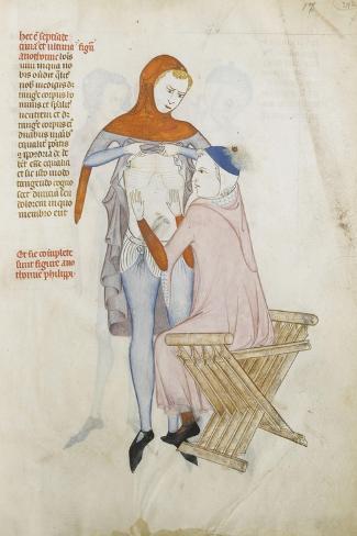Liber notabilium Philippi septimi francorum regis, a libris Galieni extractus--Stretched Canvas Print