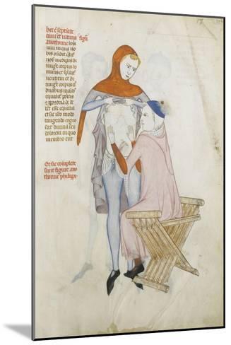 Liber notabilium Philippi septimi francorum regis, a libris Galieni extractus--Mounted Giclee Print