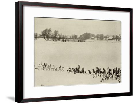 Marsh Weeds (algue des marais)-Peter Henry Emerson-Framed Art Print