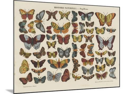 Histoire naturelle : papillons--Mounted Giclee Print