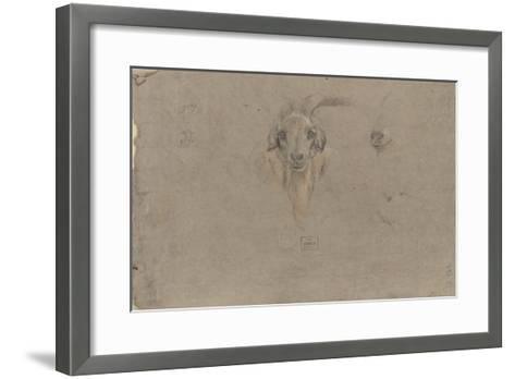 Etudes de tête de bouquetin-Pieter Boel-Framed Art Print