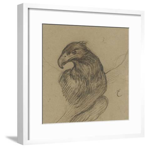 Etude d'un vautour-Pieter Boel-Framed Art Print