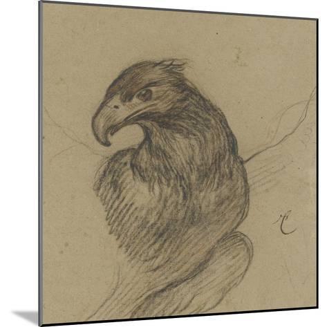 Etude d'un vautour-Pieter Boel-Mounted Giclee Print
