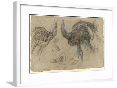 Etude de deux autruches debout et d'une tête-Pieter Boel-Framed Art Print