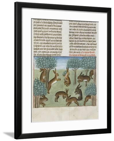 Le Livre de la chasse de Gaston Phébus : le lièvre et sa nature--Framed Art Print