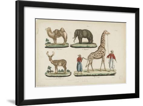 Le chameau, l'?l?phant, le daim, la girafe--Framed Art Print