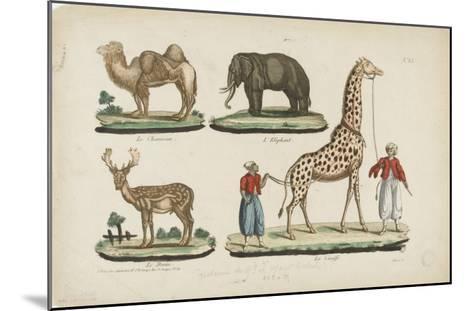 Le chameau, l'?l?phant, le daim, la girafe--Mounted Giclee Print