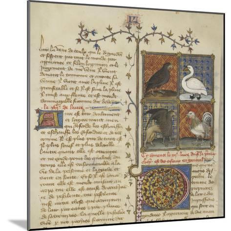 Le Livre des propriétés des choses (De proprietatibus rerum)--Mounted Giclee Print
