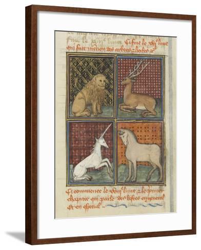 Le Livre des propriétés des choses (De proprietatibus rerum)--Framed Art Print