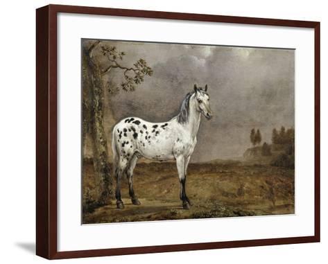 Le Cheval pie-Paulus Potter-Framed Art Print