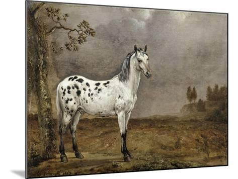 Le Cheval pie-Paulus Potter-Mounted Giclee Print