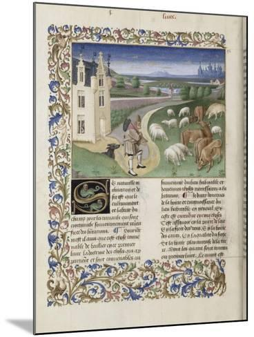 """Le Rustican ou """"Livre des proffitz champestres et ruraulx"""" par Pietro de Crescenzi-du Boccace de Genève Maître-Mounted Giclee Print"""