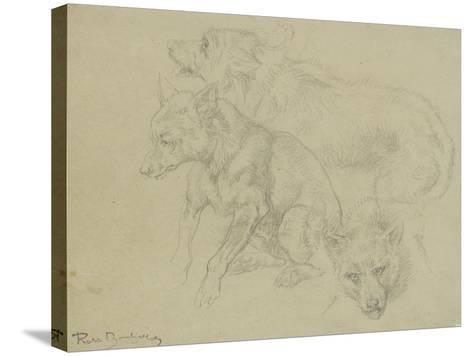 Trois études de loups-Rosa Bonheur-Stretched Canvas Print