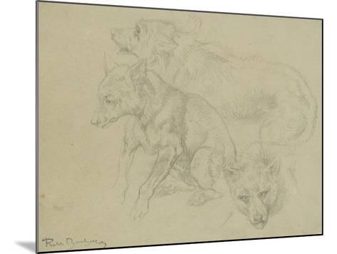 Trois études de loups-Rosa Bonheur-Mounted Giclee Print