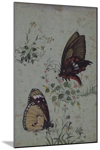 Deux papillons parmi les fleurs--Mounted Giclee Print