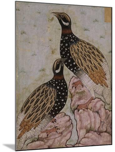 Deux perdrix sur des rochers--Mounted Giclee Print