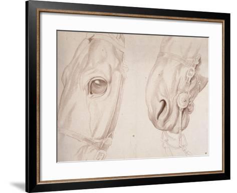 Deux études partielles d'une tête de cheval bridée-Edme Bouchardon-Framed Art Print