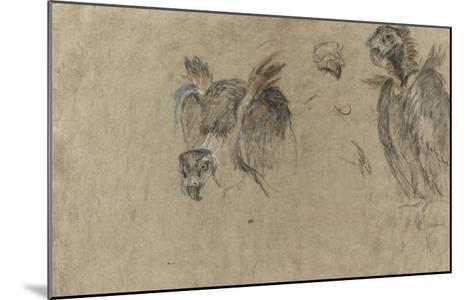 Deux études de vautour et deux détails-Pieter Boel-Mounted Giclee Print
