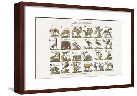 Animaux divers--Framed Art Print