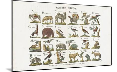 Animaux divers--Mounted Giclee Print