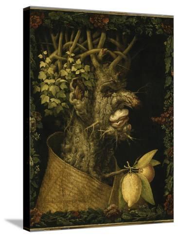 L'Hiver-Giuseppe Arcimboldo-Stretched Canvas Print