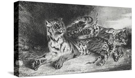 Jeune tigre jouant avec sa mère, lithographie 1er état-Eugene Delacroix-Stretched Canvas Print