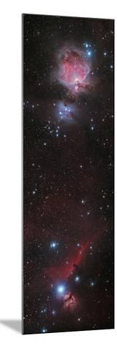 Mosaic of Orion Nebula and Horsehead Nebula--Mounted Photographic Print